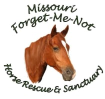 Help Us Raise $12,000 for Horse Friendly Fencing