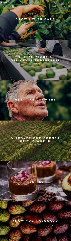 NZ Avocado Homepage