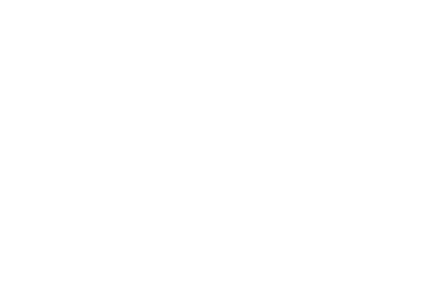 We made a name for ourselves