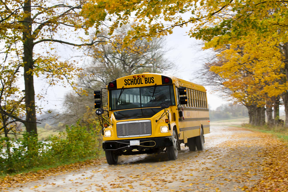 Collins Recalls Nearly 3,000 School Buses for Insufficient Leg protection