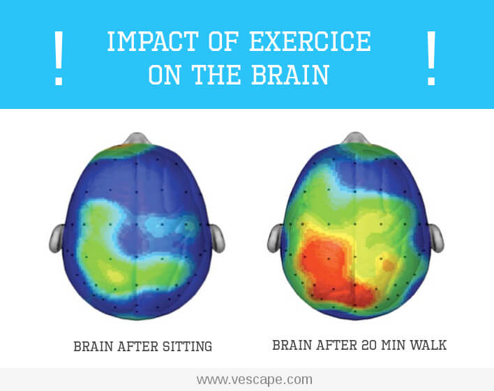 Effects of exercise on the brain