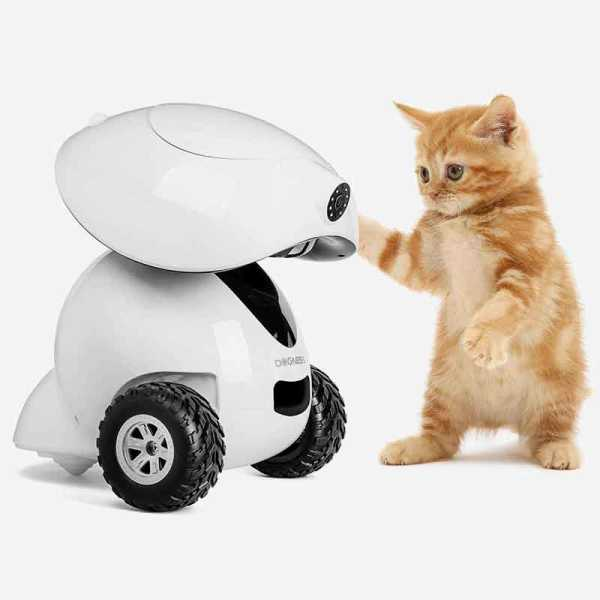 link to Dogness iPet Robot