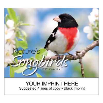 Picture of Nature's Songbirds Wall Calendar