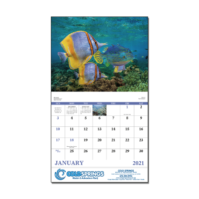 Picture of Ocean Glory Wall Calendar