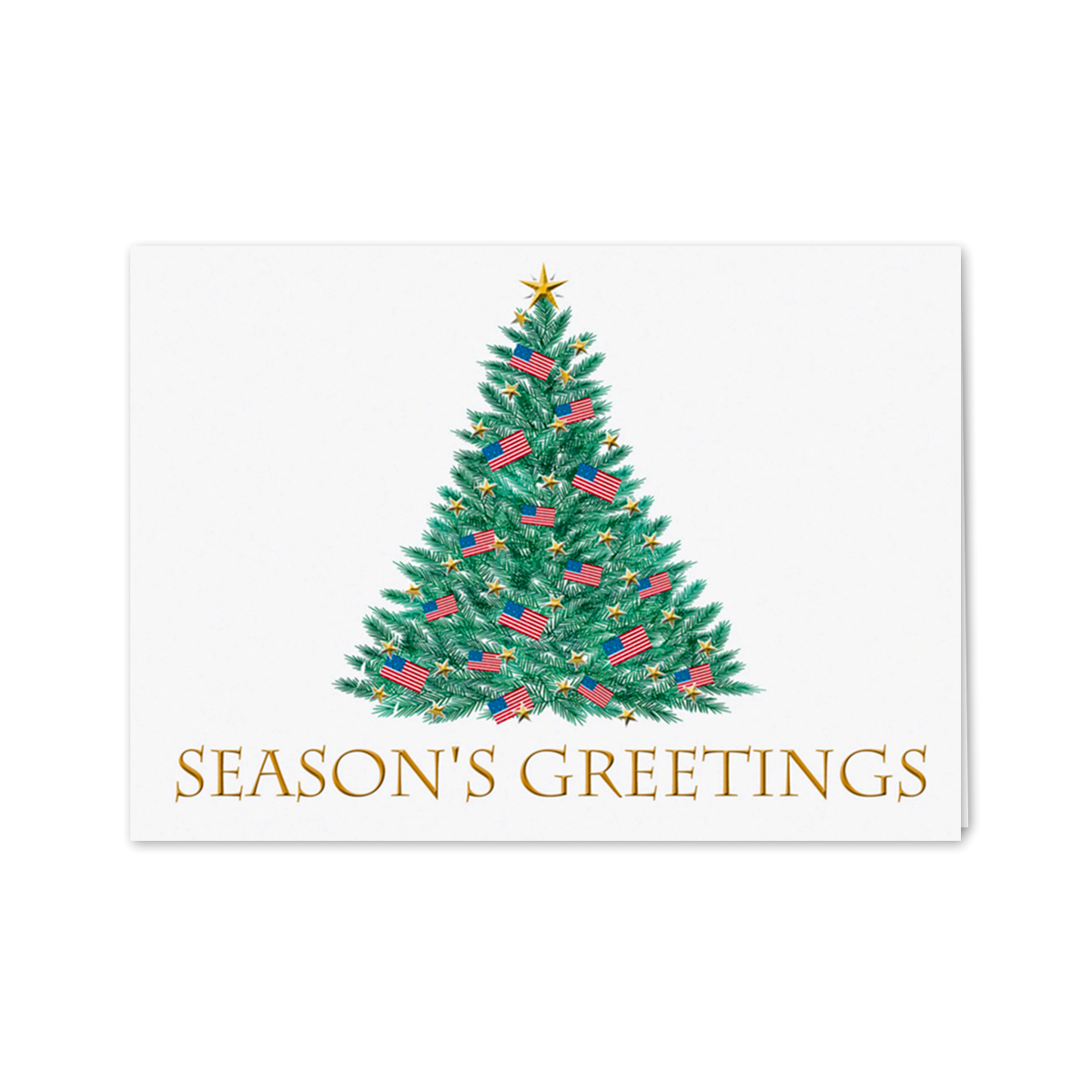 Patriotic Season's Greetings Greeting Card