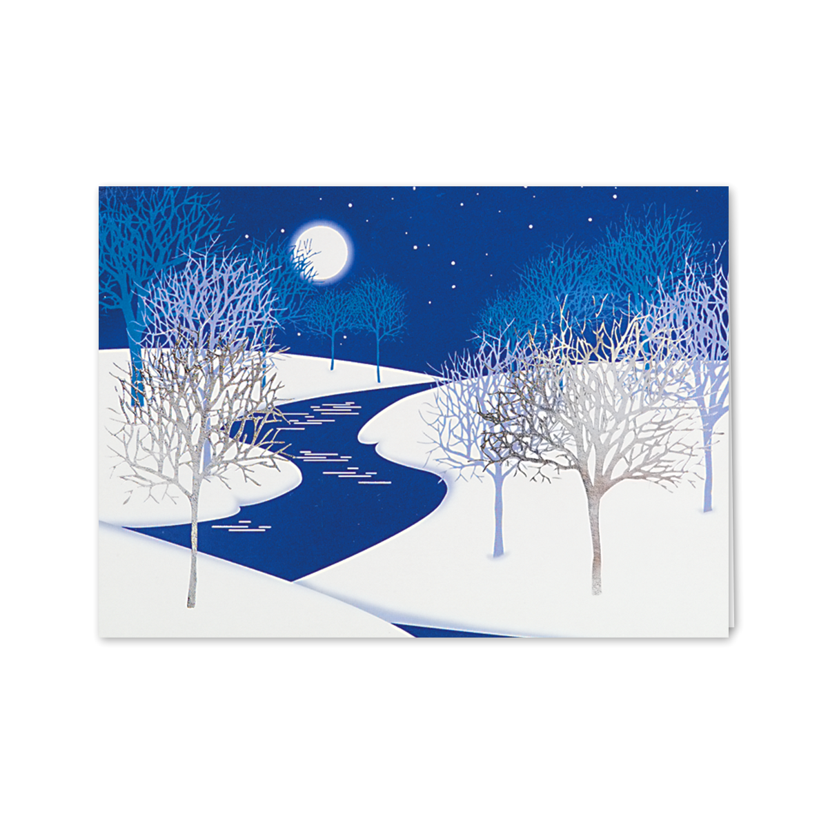 Cold Night Trees With Snow Greeting Card