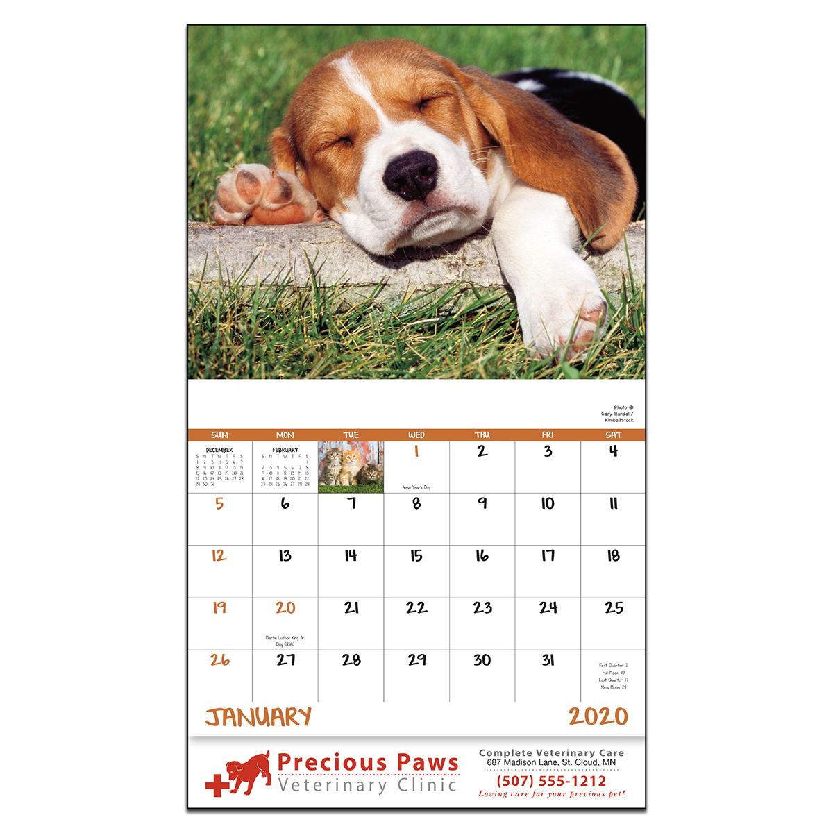 February 2020 Calendar With Dog Puppies & Kittens Wall Calendar | Mines Press