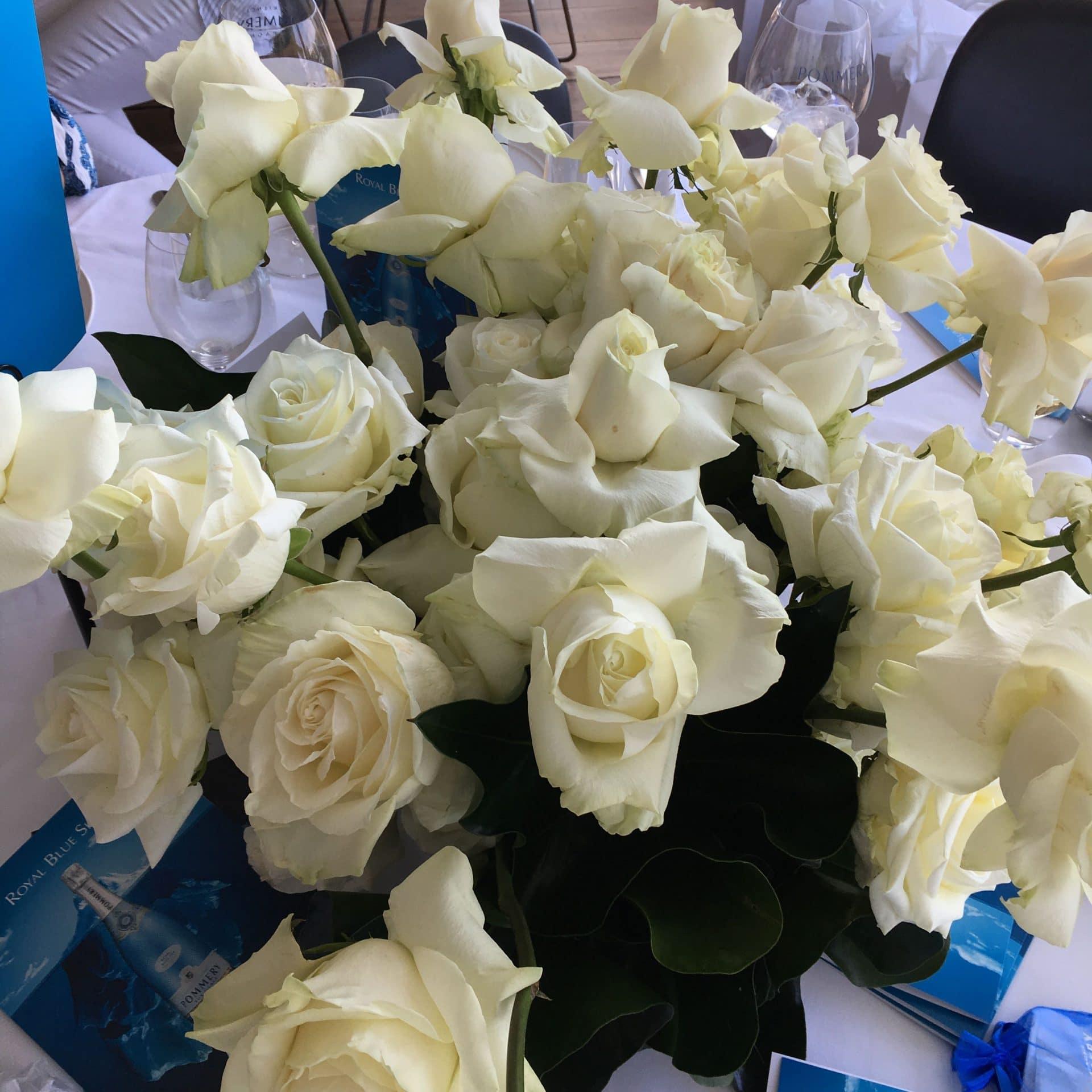 Roses at Catalina's