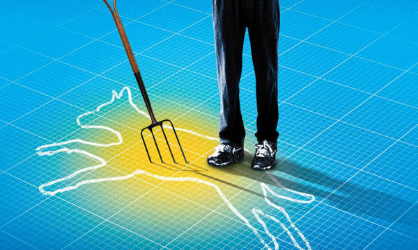 Artwork for The Curious Incident of the Dog in the Night-Time