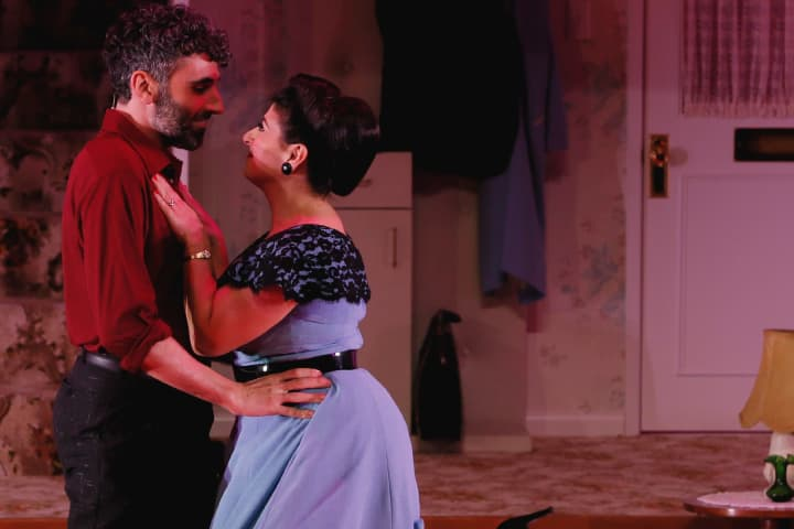 Peter Paltos and Susie Youssef in Home, I'm Darling. Photo: Jeff Busby