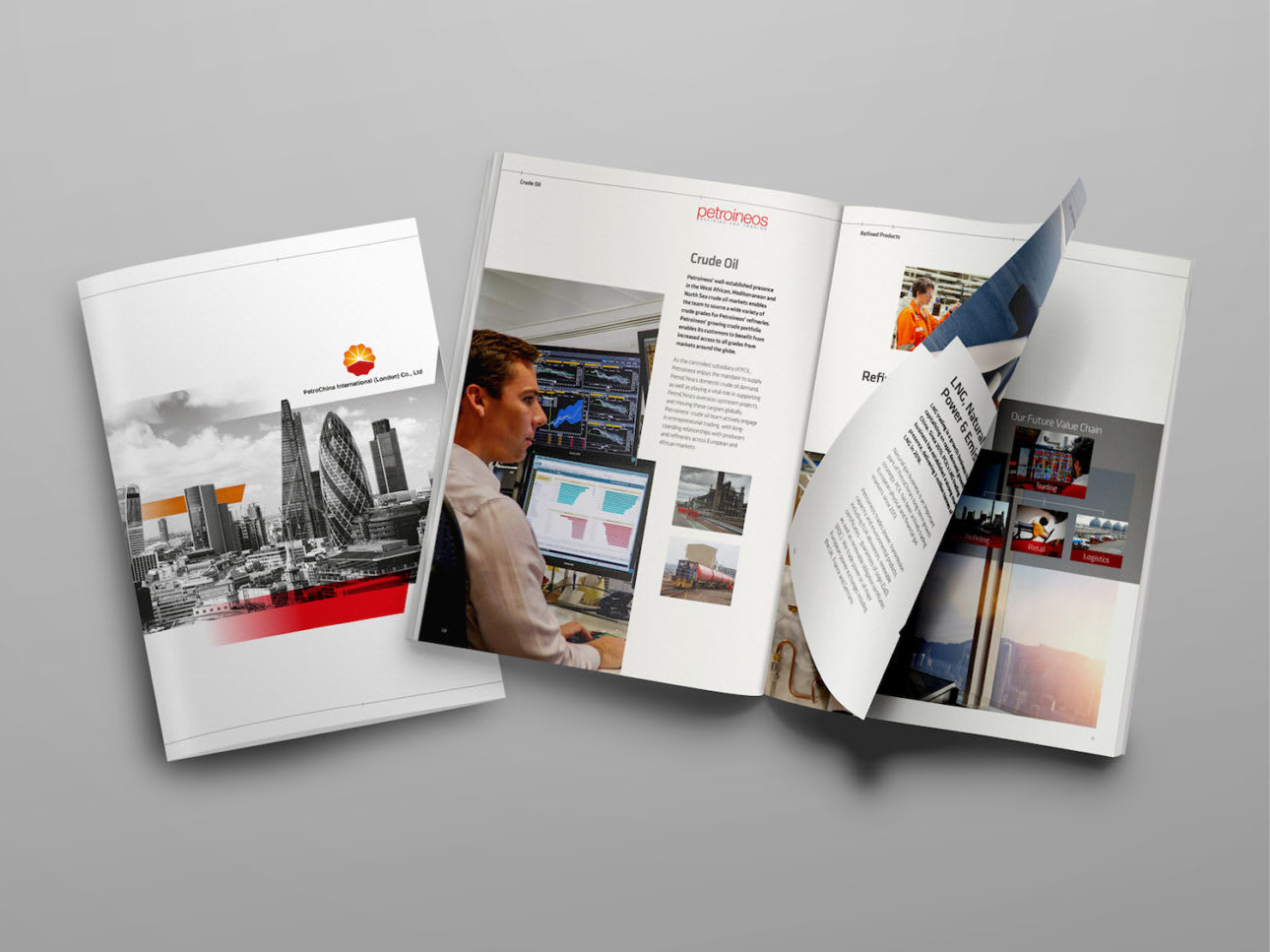 WORK Petroineos Mock Up Brochure