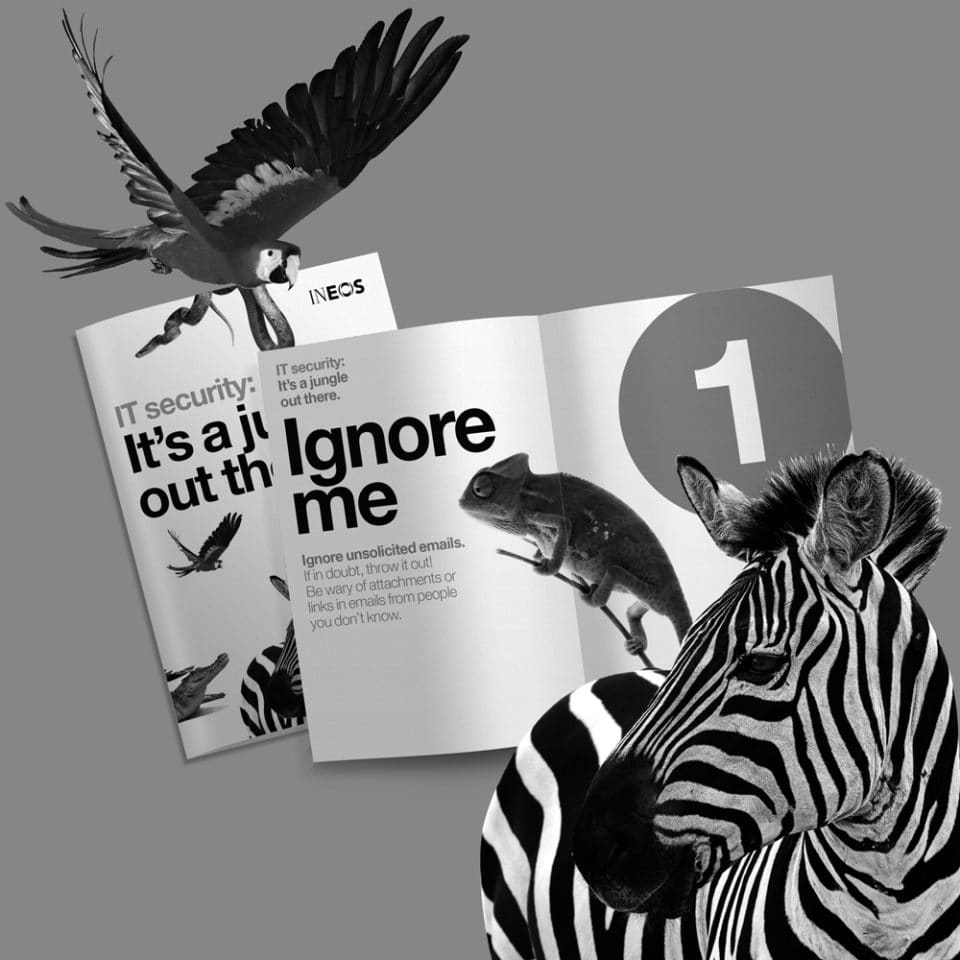 IT jungle booklet BW