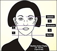 Ideal facial proportions in the vertical dimension