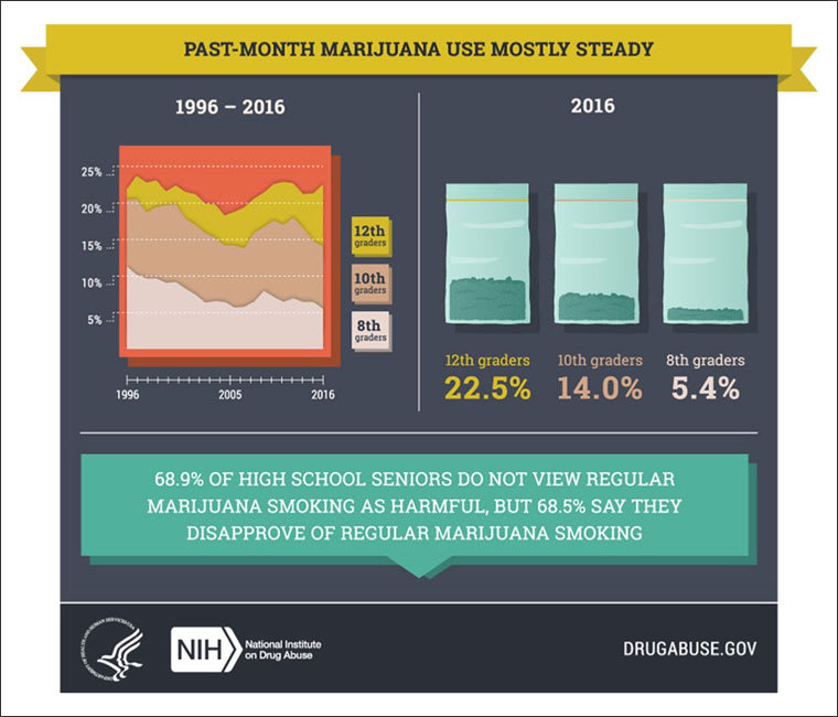 Infographic of past month marijana use