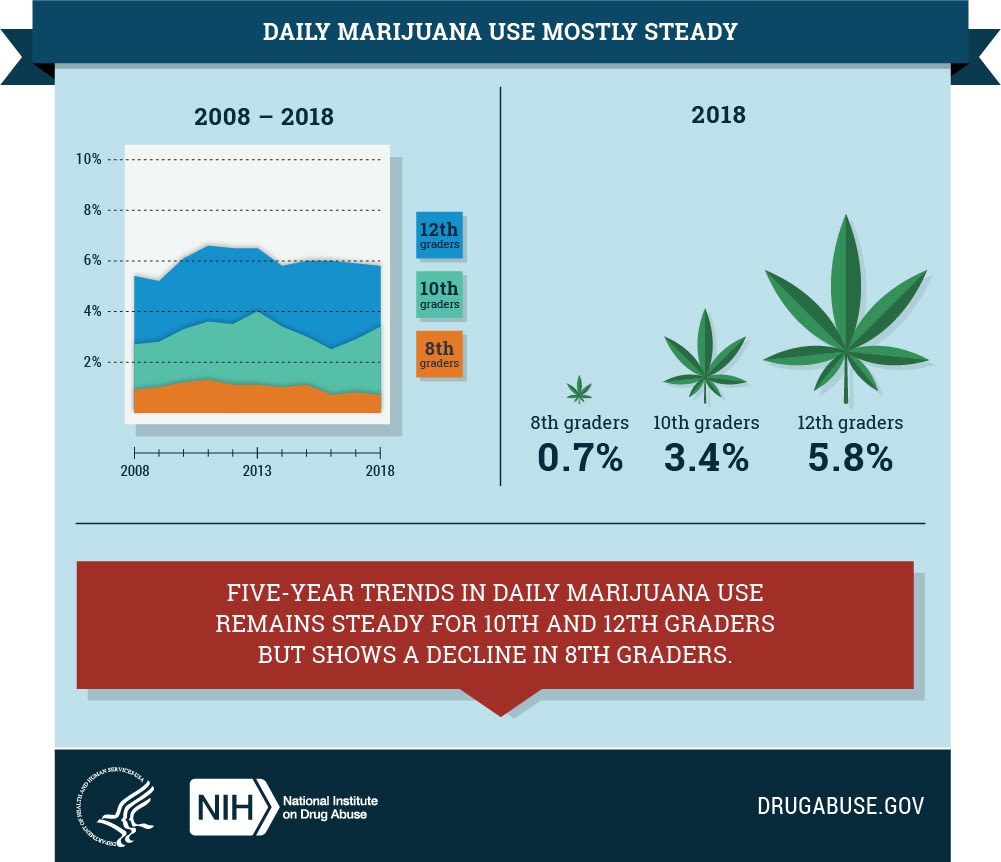 Infographic of daily marijuana use