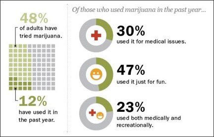 Infographic showing the increase of marijuana use over the last decade