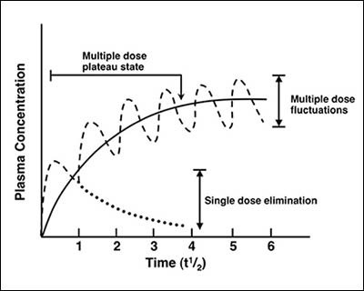 effect of dosing on plasma concentrations