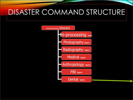 Image showing disaster incident command structure.