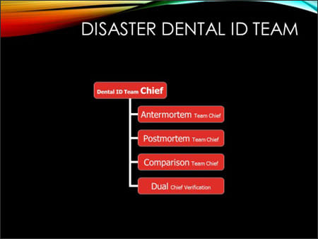 Image showing disaster dental ID team structure.