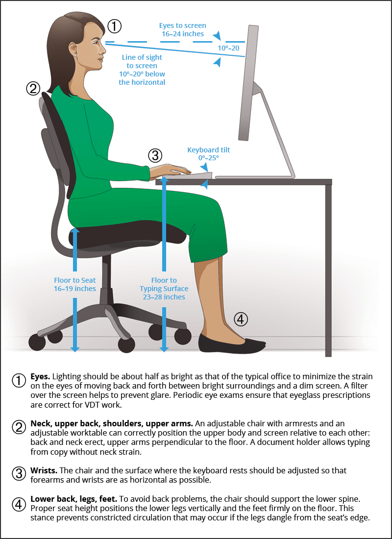Business Office Assistant Seated Properly