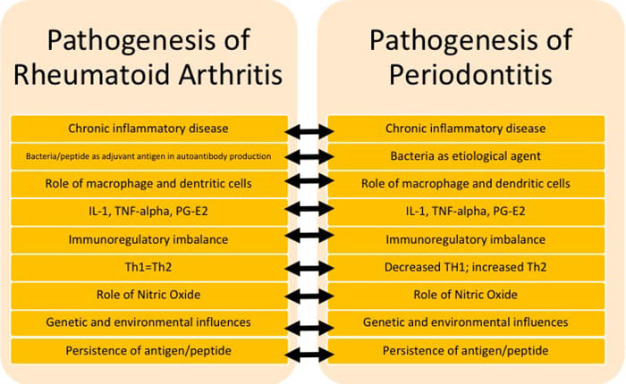 Table 1 Common Pathologic Factors in RA and periodontitis