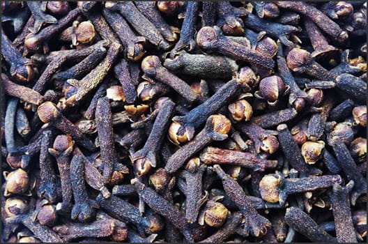 Photograph showing cloves