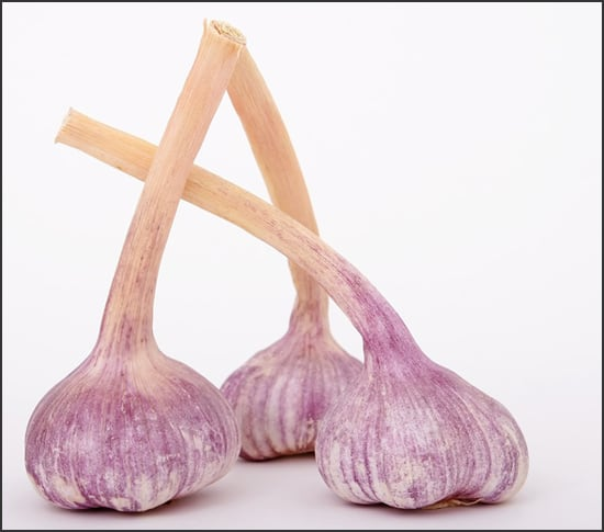 Photograph showing garlic