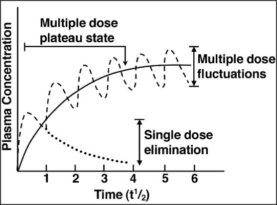 Chart showing at optimal dosing, steady-state plasma concentration remains within the therapeutic range