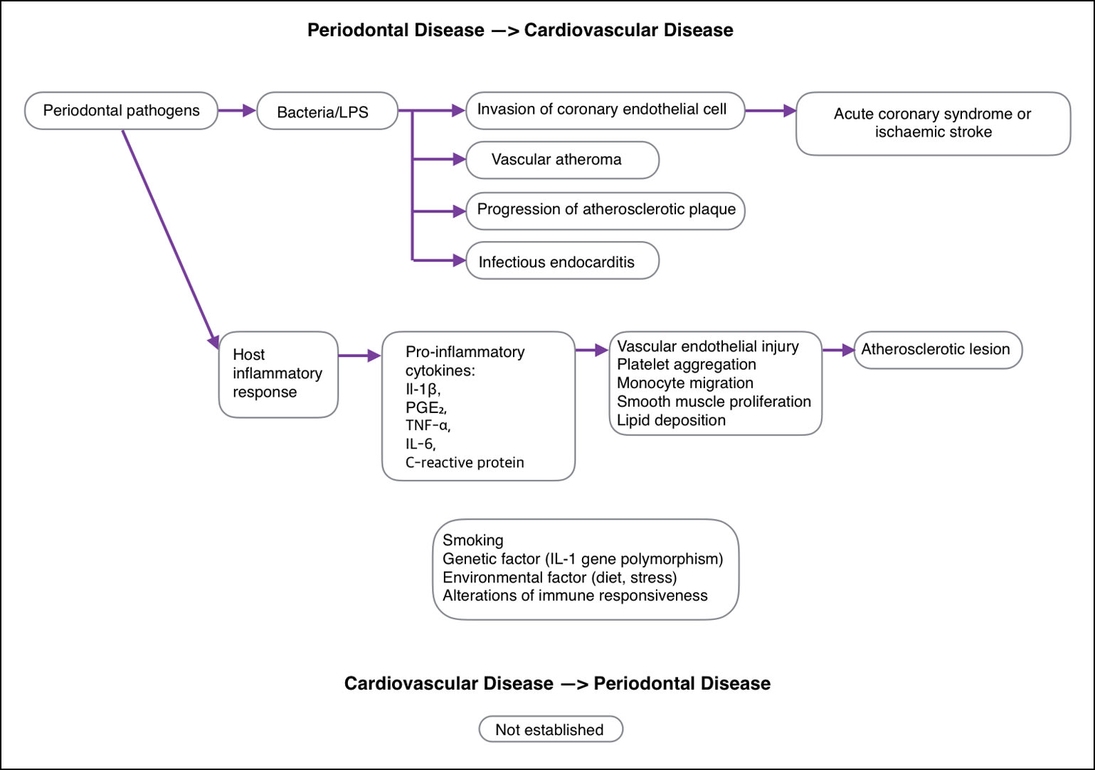 Diagram of periodontal and cardiovascular disease interaction.
