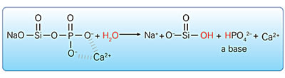 Image: Novamin®: Calcium and phosphate ions are released via hydrolysis reaction.