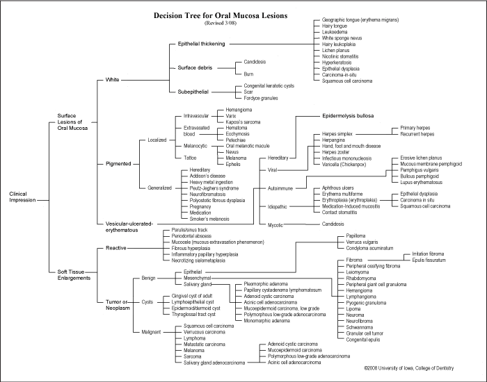 Image: Decision Tree for Oral Mucosa Lesions