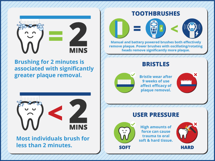 Infographic showing facts about toothbrushing.