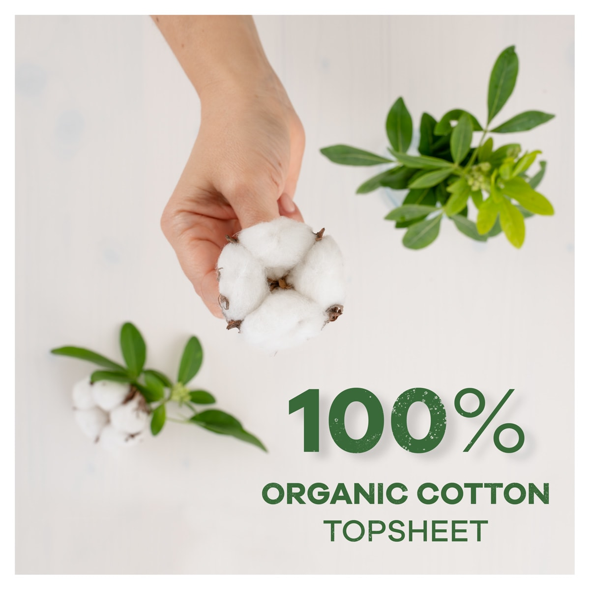 100% Organic Cotton Topsheet