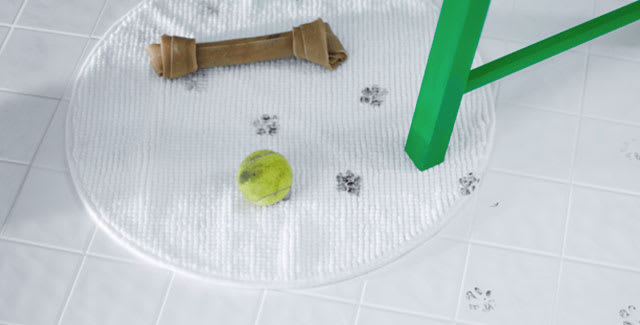 How to remove pet stains and odours