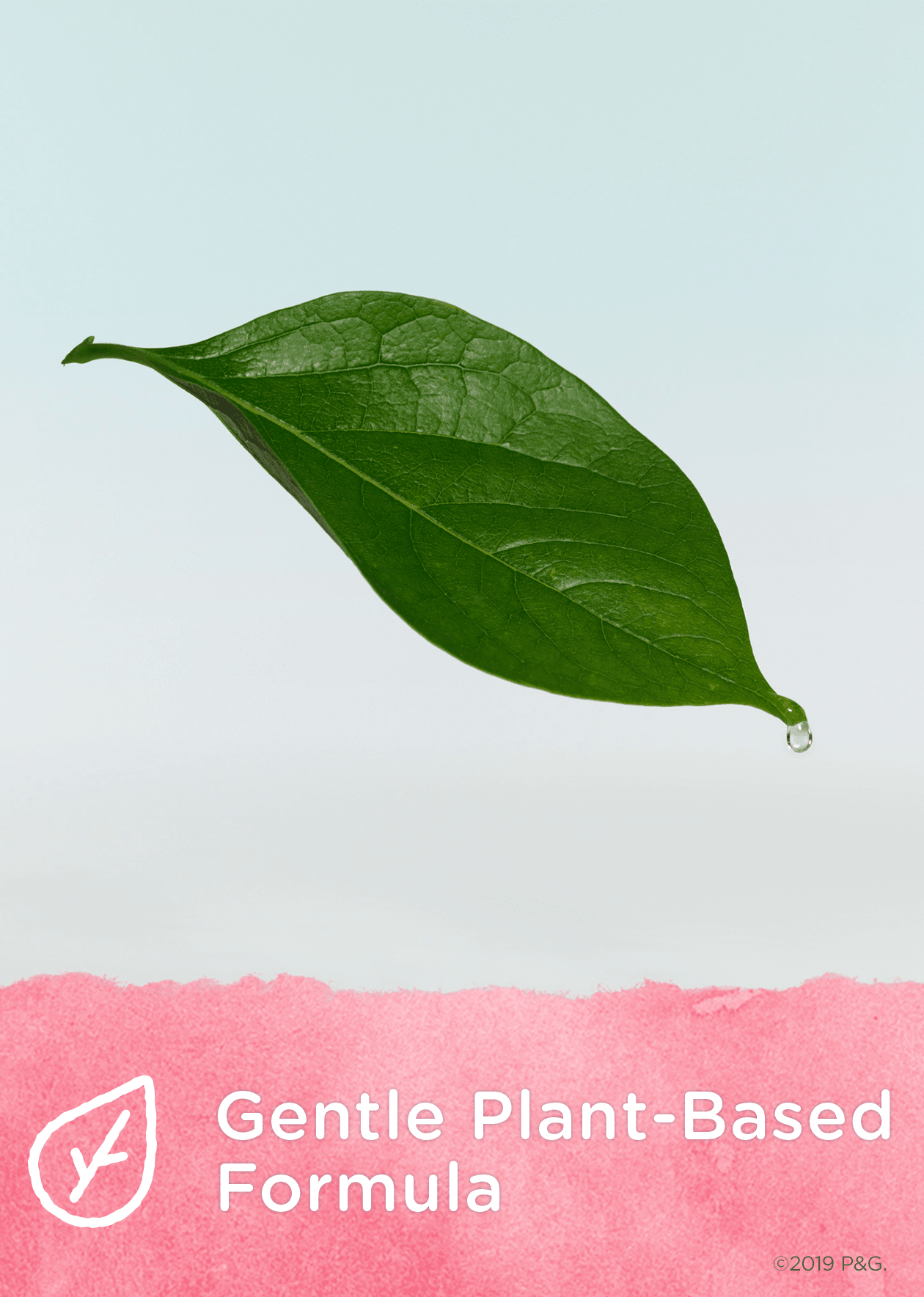 Gentle Plant-based Formula (Leaf/nature)