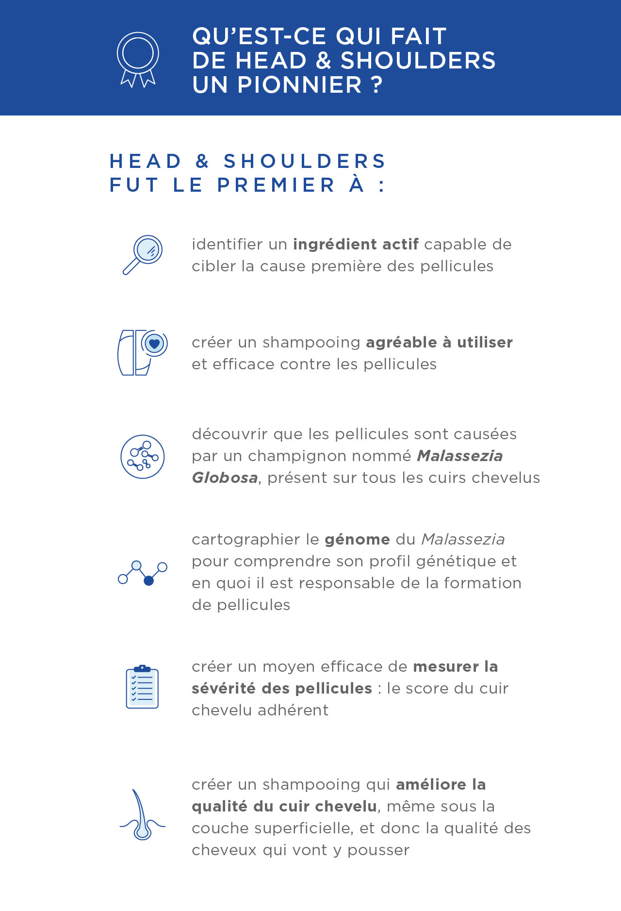 HS_Infographic_Pioneer_FR_UK