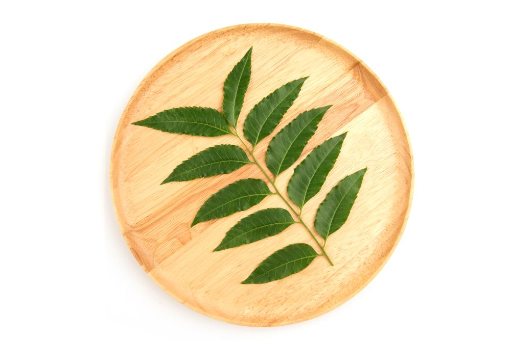 Why to include neem in your hair care routine?