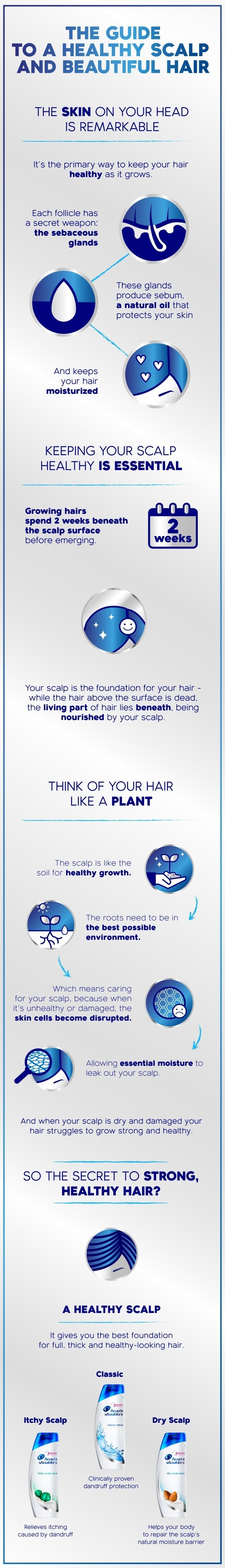 The guide to healthy scalp and beautiful hair