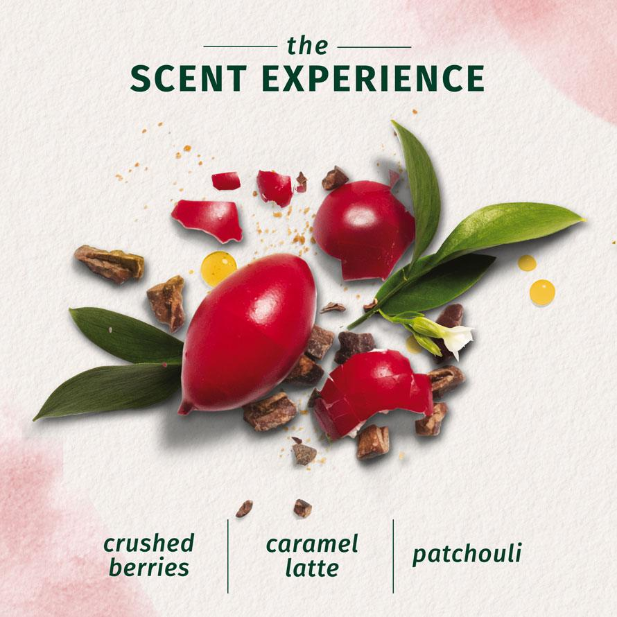 Herbal Essences The Scent Experience