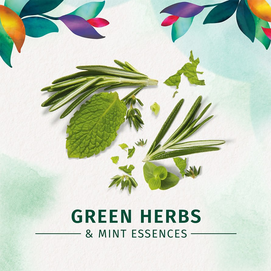 Herbal Essences Daily Detox Quench Conditioner Green Herbs & Mint