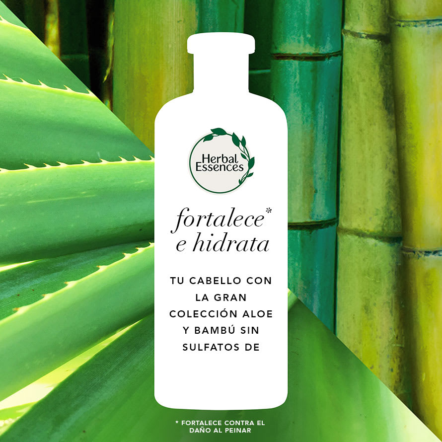 HE Packshot Ingredients Aloe Bamboo