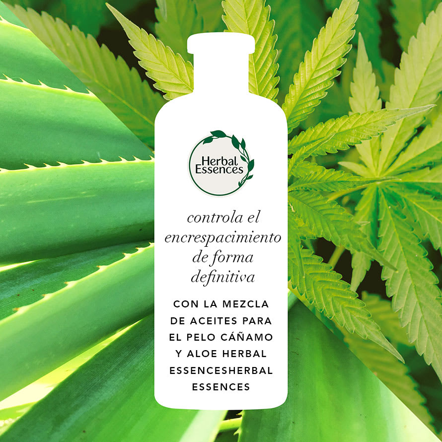 HE Packshot Ingredients Aloe Hemp