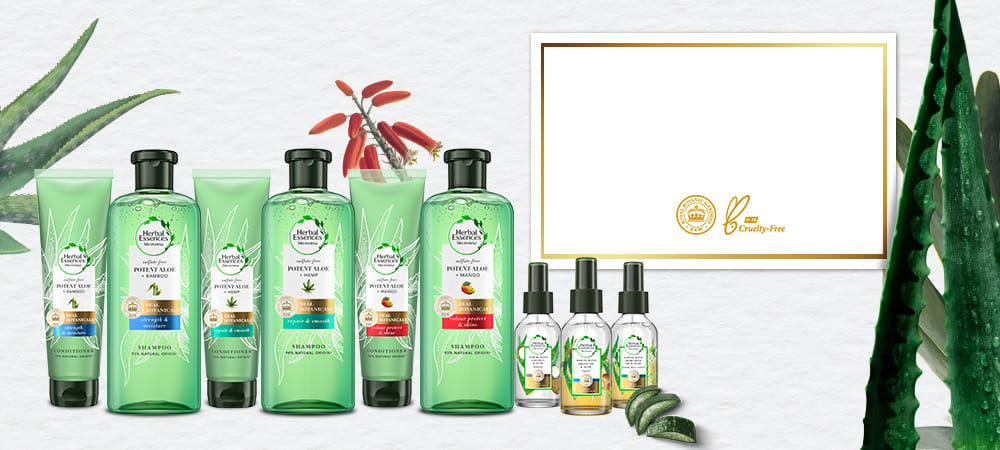 Aloe collection Homepage Banner