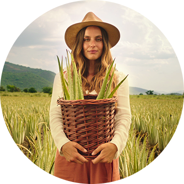 A smiling woman holding a basket full of Aloe Vera in a field of Aloe (the key natural ingredient used in the Herbal Essences Potent Aloe Vera Collection)