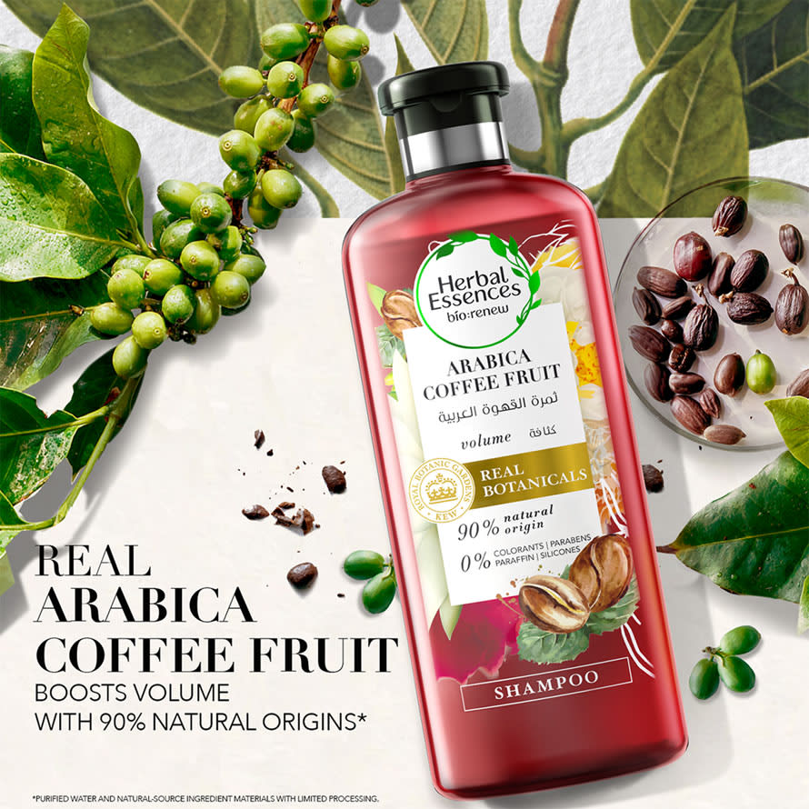 Arabica Coffe Fruit Shampoo