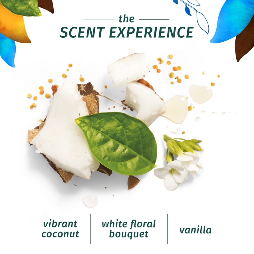 Scent Experience