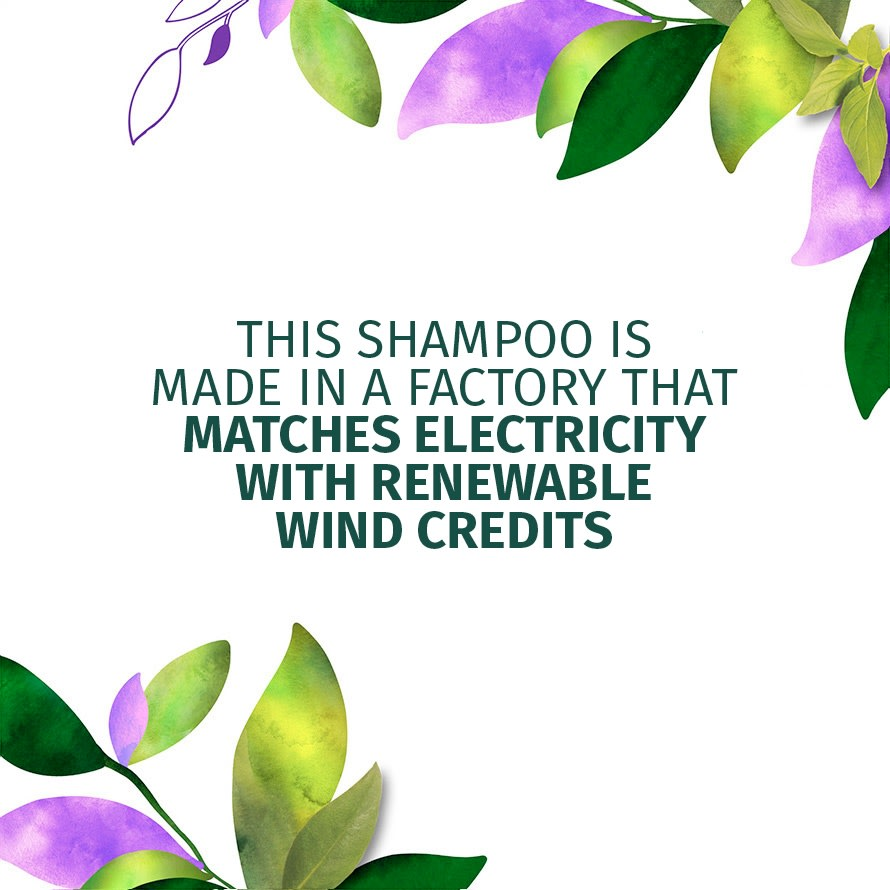 Matches Electricity With Renewable Wind Credits