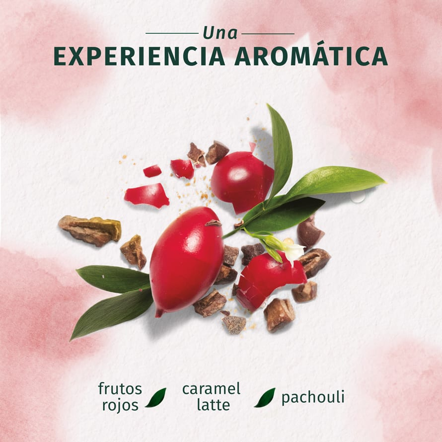 Arabica Coffee Fruit Acondicionador