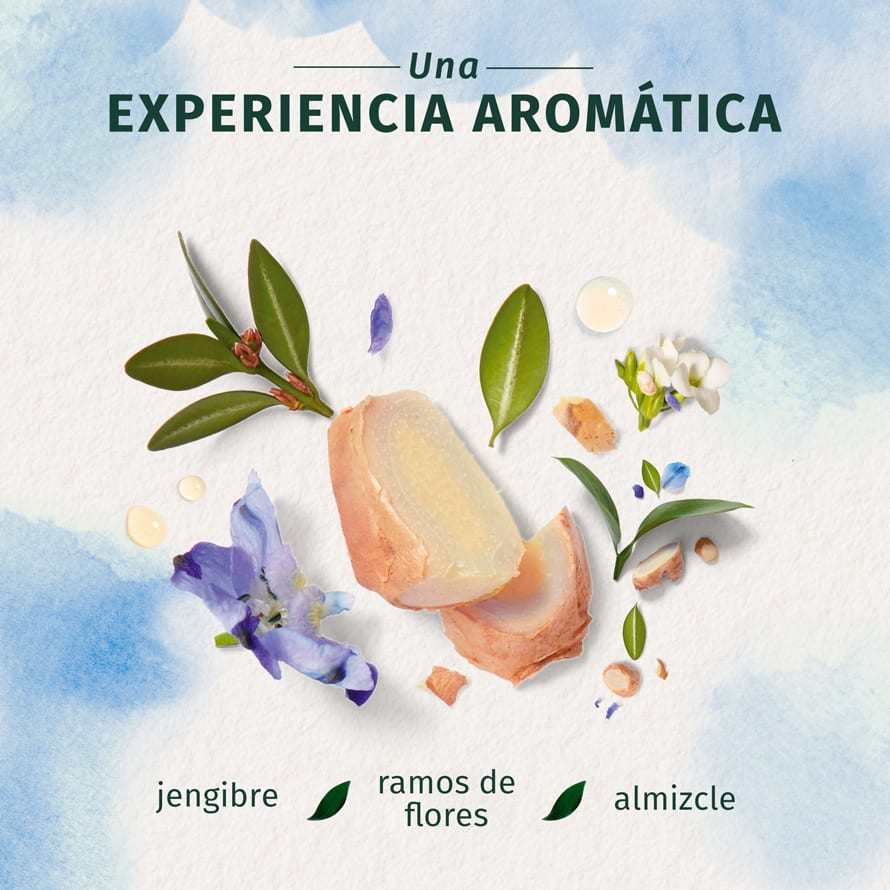 Blue Ginger Conditioner Una Experiencia Aromatica