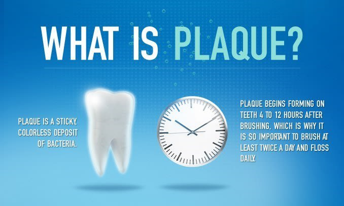 What is Plaque